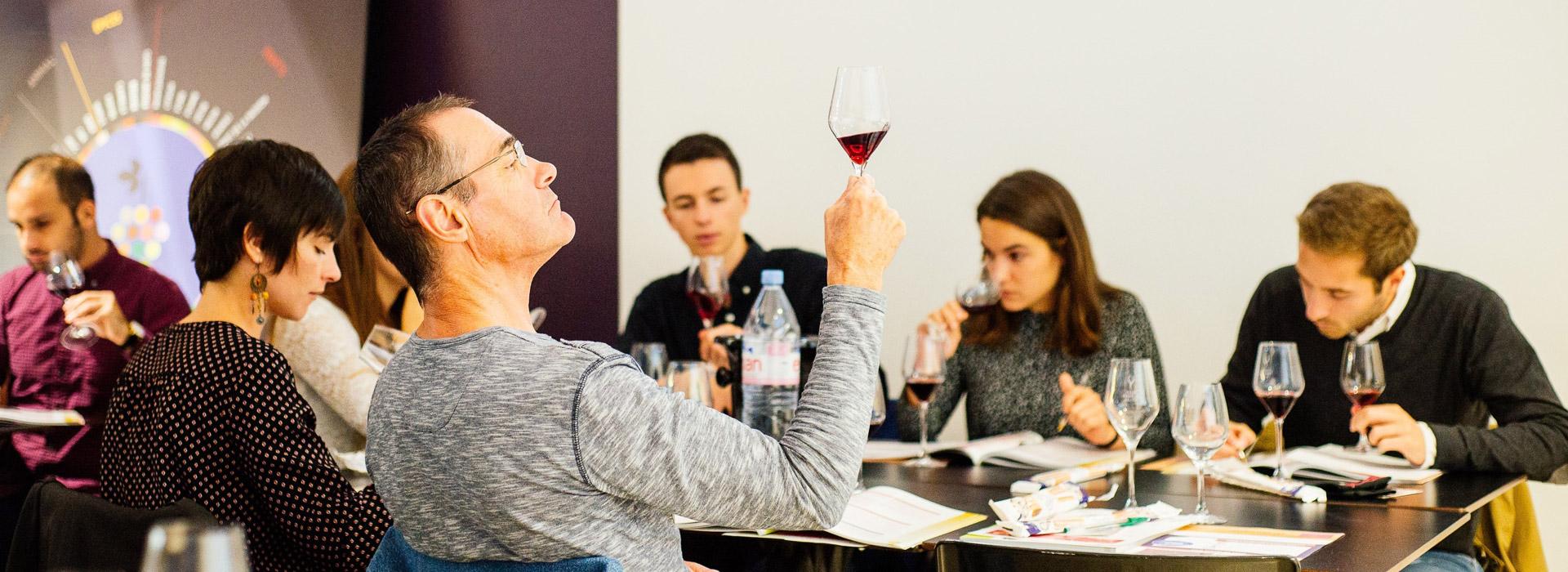 N°1 du cours d'oenologie en France