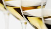 Vin blanc, accords Mets & Vins