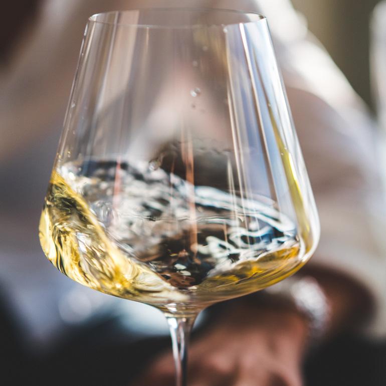 Cours 1 Le B.A.-BA du vin